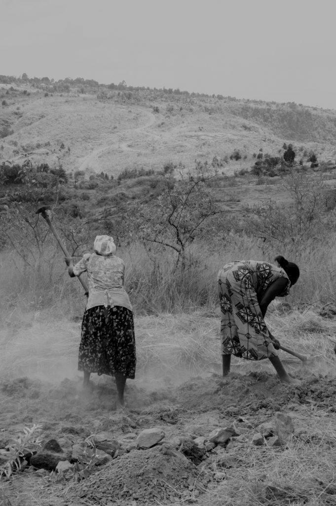 Working in the shamba-bamba